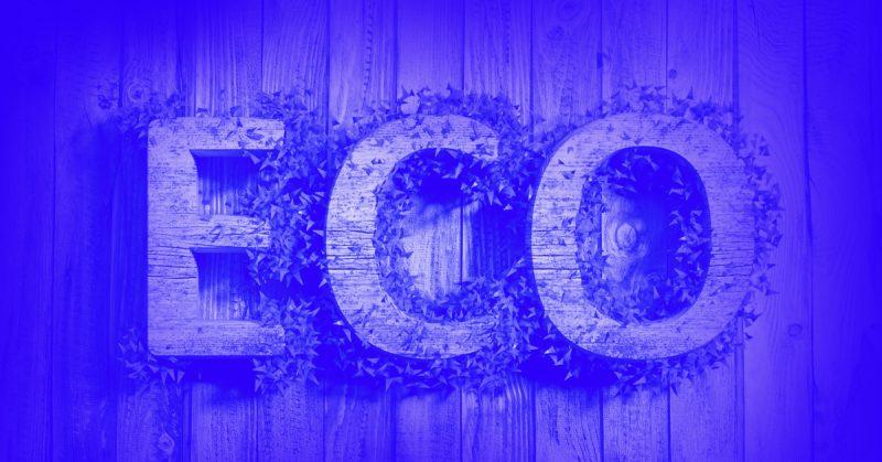 92% konsumentów chce kupować od firm działających na rzecz środowiska. Czy to wystarczający powód dla przedsiębiorców na bycie eko?